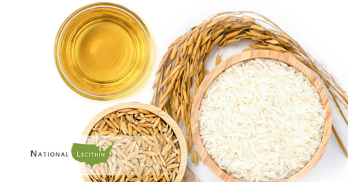 Lecithin In Edibles How To Use Lecithin In Edible Making